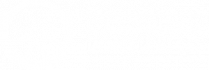Logo Centro Medico Ponticello Bianc